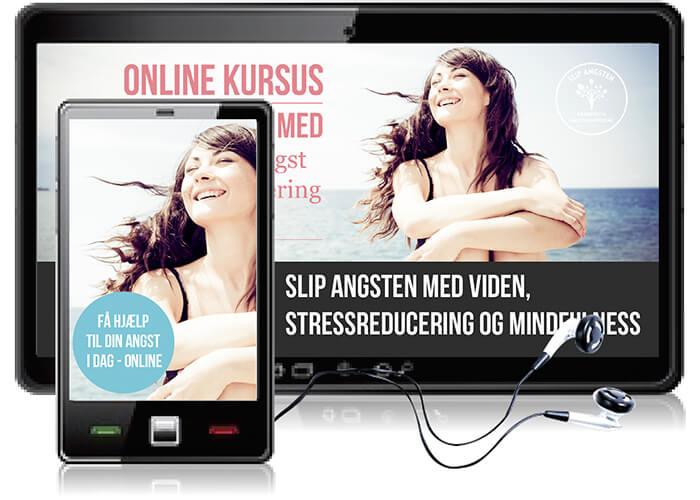 viden-stress-mindfulness-online