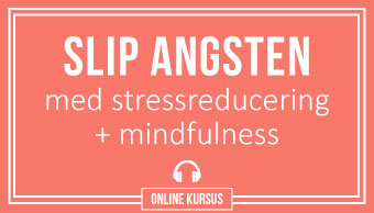 stressreducering og mindfulness